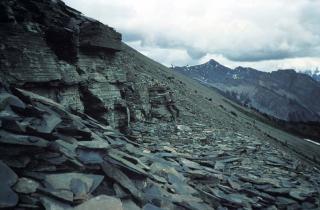 バージェス頁岩の画像 p1_1