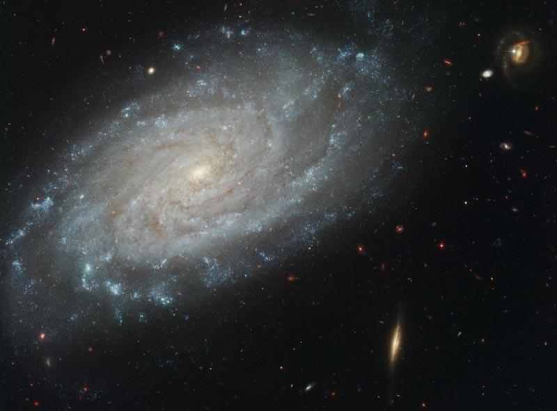 渦巻銀河 NGC 3370